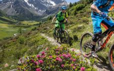 Bikehotel_Bike_Mountainbike